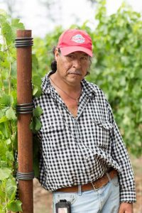 Eola Hills vineyard operations mananger Antonio Mendez