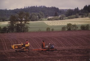 Summer_plowing Oak Grove_1983
