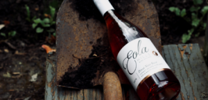 First Annual Eola Hills Arbor Day Celebration in Oregon Wine Country